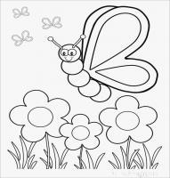 رنگ آمیزی | واحد کار حشرات